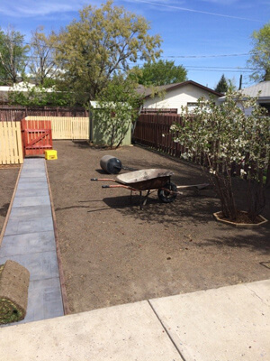 Backyard Before Turf was Installed